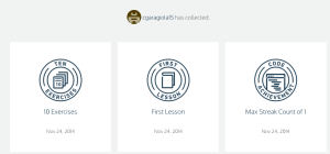 Code Academy Badges